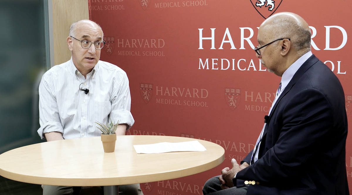 Harvard faculty discuss at round table